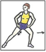 Adductor – Groin