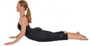 cobra pose  stretching hip flexors and abdominal muscles